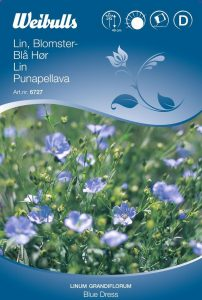 Blomsterlin Blått - Blue Dress - Weibulls fröer