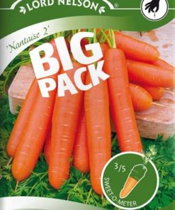 Morot - Sommar - Nantaise 2 - Big Pack - Lord Nelson fröer