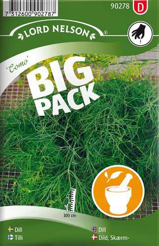 Dill - Vanlig - Como - Big Pack - Lord Nelson fröer