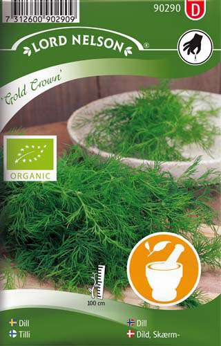 Dill - Vanlig - Gold Crown - Organic - Lord Nelson fröer