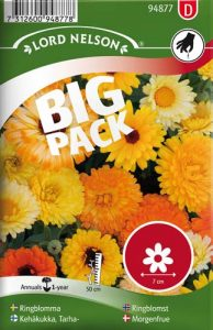 Ringblomma - bl färger - Big Pack - Lord Nelson fröer