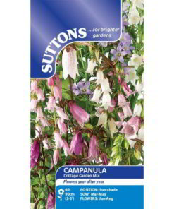 Campanula Cottage Garden Mix-0