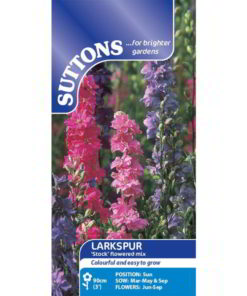 Larkspur Stock Flowered Mix-0