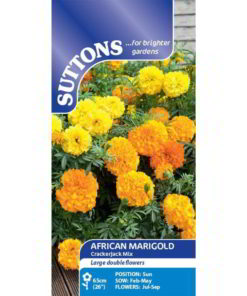African Marigold Crackerjack Mix-0