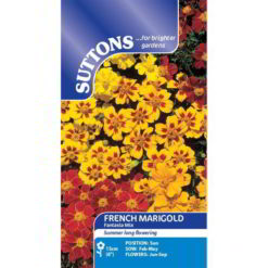 French Marigold Fantasia Mix-0