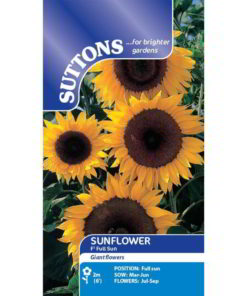 Sunflower* Full Sun F1-0