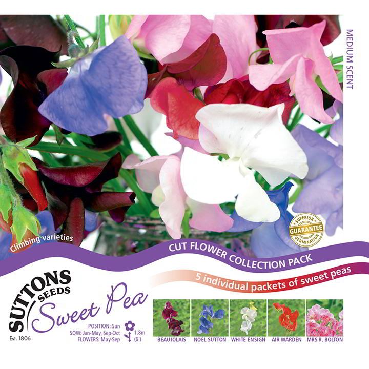 Sweet Pea Collection (Double Hook)-0
