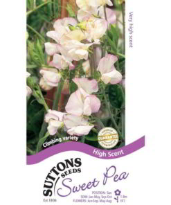 Sweet Pea High Scent-0