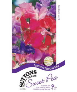 Sweet Pea Spencer Special Mix-0