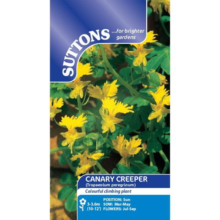 Canary ranka Frön - Suttons Seeds-8368