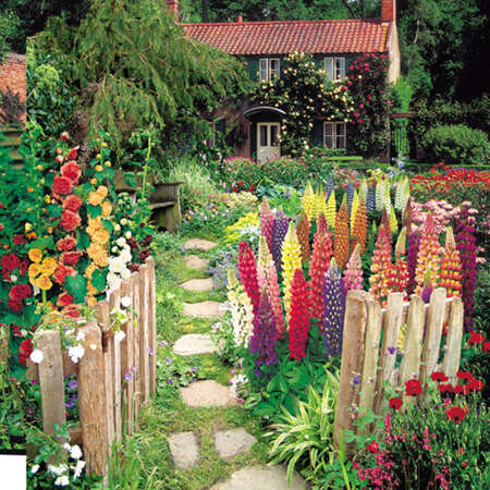 Cottage Garden Collection-8958