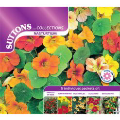 Nasturtium* Collection (Double Hook)-0
