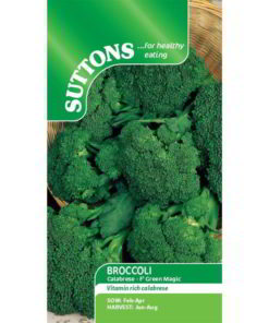 Broccoli Calabrese Green Magic F1-0