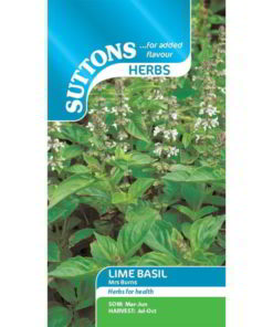 Herb Lime Basil Mrs Burns-0