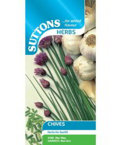 Herb Chives-0