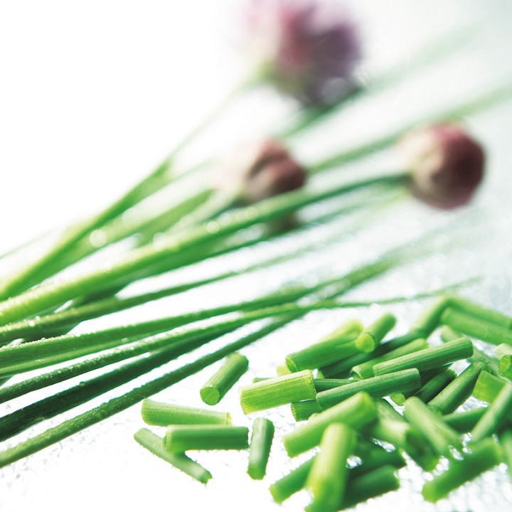 Herb Chives-9041