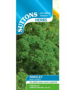 Herb Parsley Moss Curled 2-0