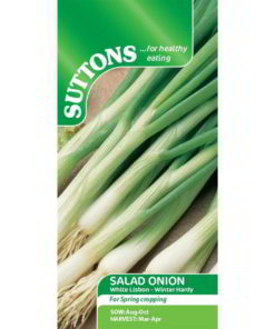 Onion Spring Onion White Lisbon Winter Hardy-0