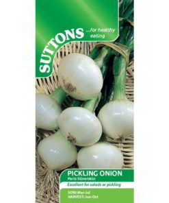 Onion Pickling Onion Paris Silverskin-0