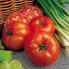 Tomat F1 Beefeater - Sutton Seeds