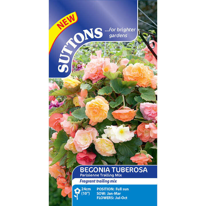 Begonia (Tuberous) - Parisienne Trailing Mix - Suttons Seeds