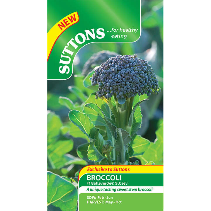 Broccoli - F1 Bellaverde Sibsey - Suttons seeds