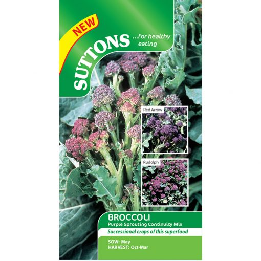 Broccoli - Purple Sprouting Continuity Mix - Suttons seeds