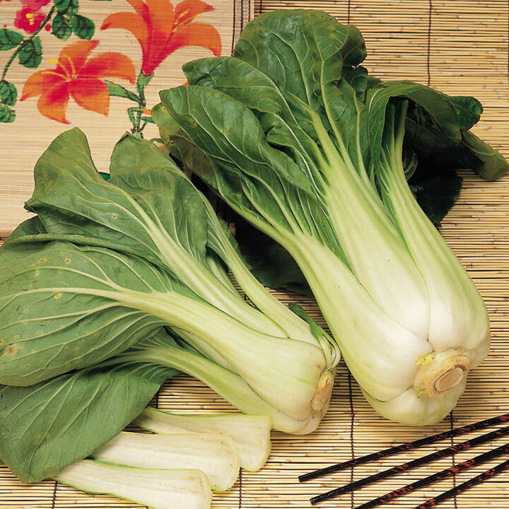 Pak Choi Red & White Mix Tape-9132