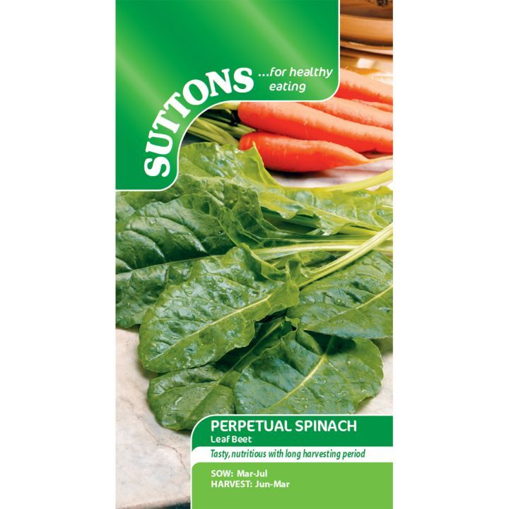 Spenat - Perpetual Spinach - Suttons Seeds