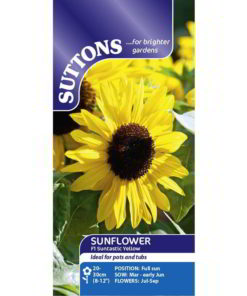 Sunflower* Suntastic Yellow-0