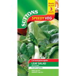 Leaf Salad Stir Fry Mix Speedy Veg-0
