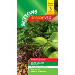 Leaf Salad Winter Mix Speedy Veg-0