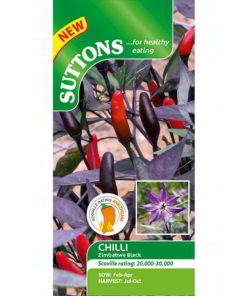 Chilli Pepper Zimbabwe Black-0