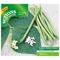 Bean Dwarf French Bean Compass-0