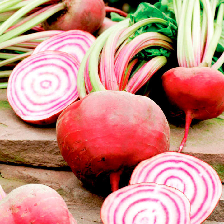 "Rödbeta (Beetroot Seeds ) "" Twin Pack Chioggia/Detroit"" - Sutton Seeds"