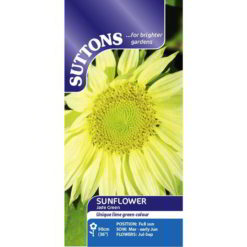 Sunflower* Jade Green-0