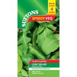 Leaf Salad Californian Mix Speedy Veg-0