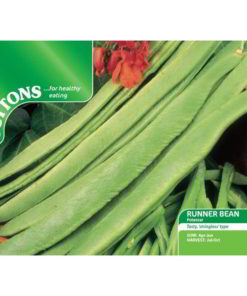 Bean Runner Bean Polestar (Stringless)-0