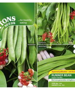 Bean Runner Bean Super Trio Mix-0