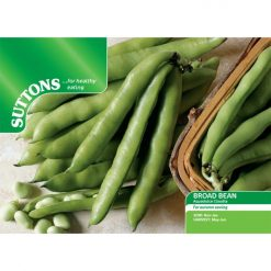 Böna Bean ´Broad Bean Aquadulce Claudia`- Suttons Seeds