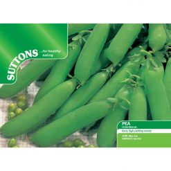 Ärta Pea ´Little Marvel`-Suttons Seeds