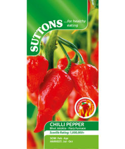 "Chili - ""Bhut Jolokia Fiery Furnace""- Sutton Seeds-7465"