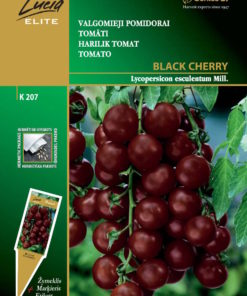 TOMAT BLACK CHERRY- SEKLOS Lucia Elite-0