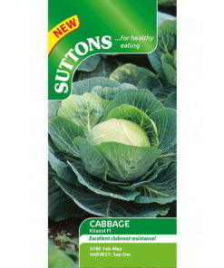 Cabage Kilazol F1 (Clubroot Resistant)-0