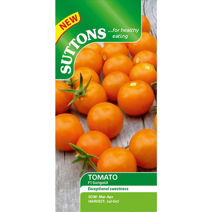 Tomat 'Tomato Seeds - F1 Sungold' - Suttons Seeds-8246