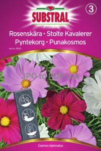 Rosenskära mix - Substral-0
