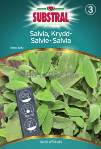 Kryddsalvia - Substral-0